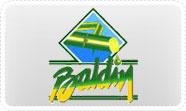 baldin_1