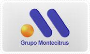 montecitrus (1)
