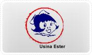 usinaester